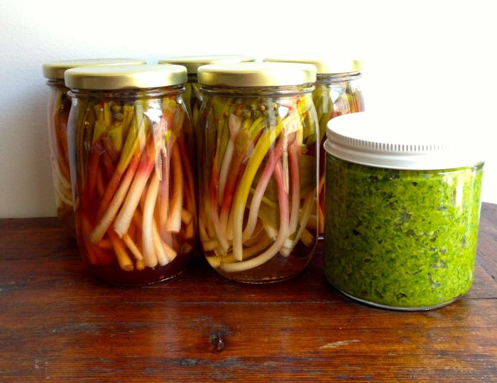 Pickled Ramps and Ramp & Parsley  Pesto